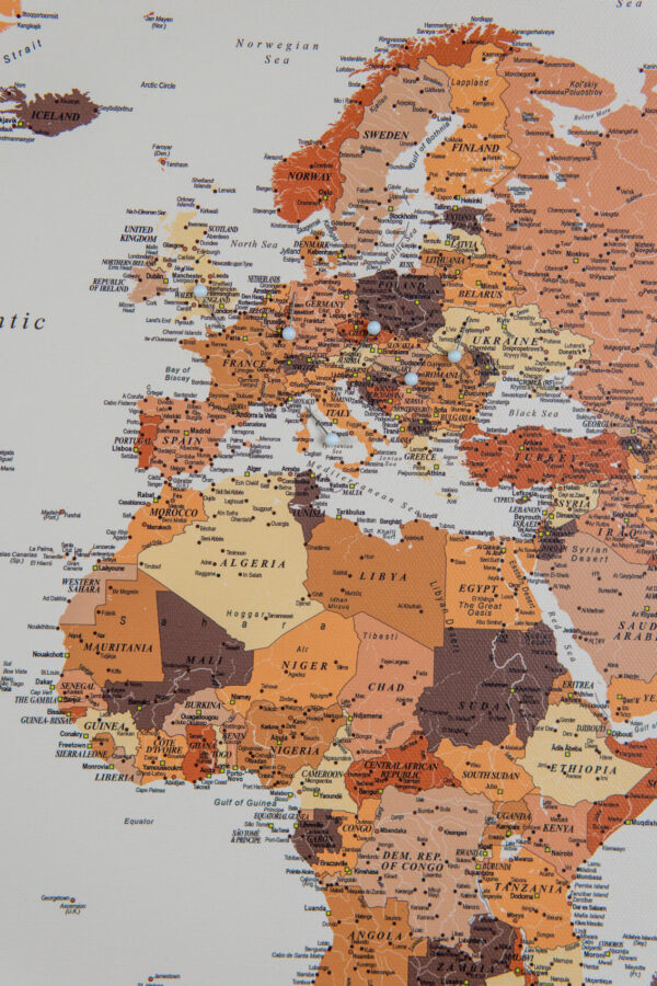 detailed world map with pin brown
