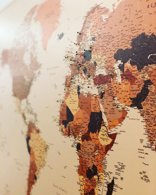 large brown tripmap world map with pins