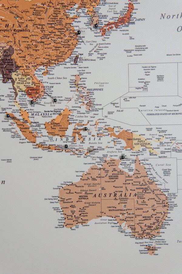map of the world brown