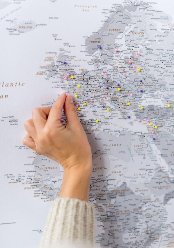 grey white push pin canvas world map