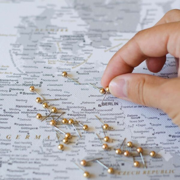 europe wall map with pins