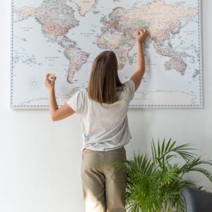 pin board retro wall map world
