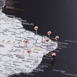 rose golden colour pins on canvas map pinning