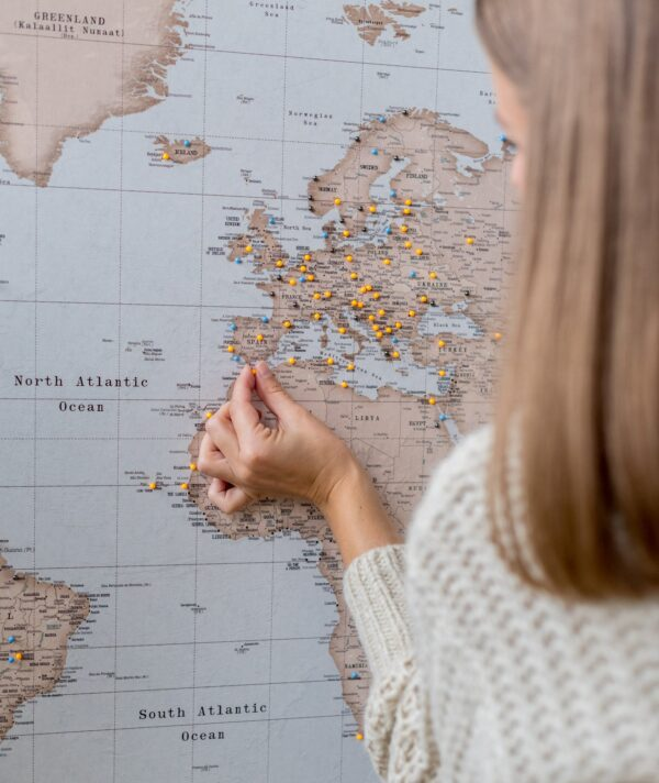 vintage detailed world map with pins