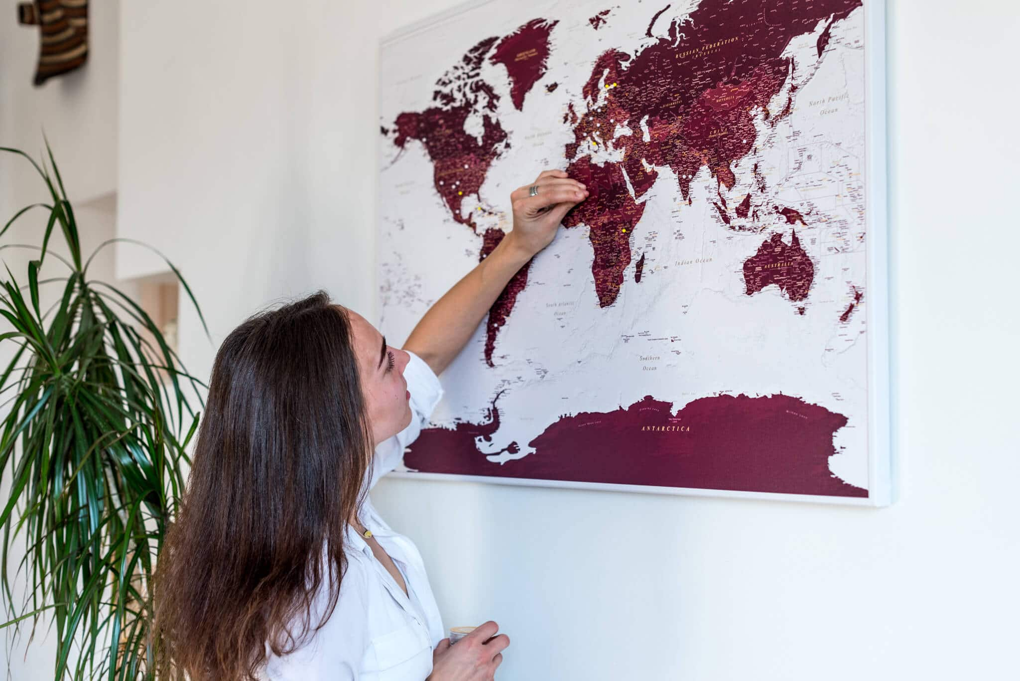 world map on canvas with pins tripmap world