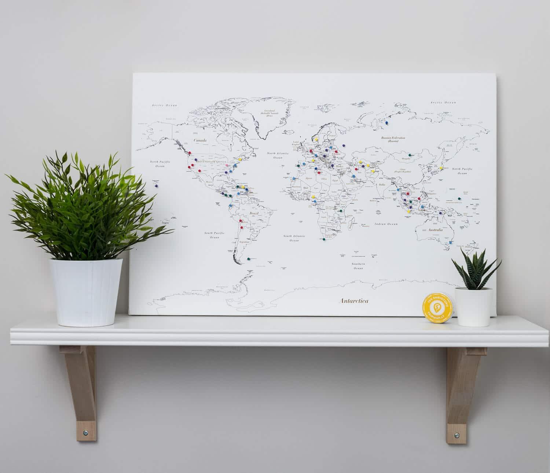 canvas world map pin white
