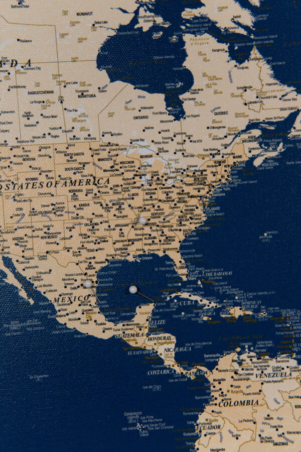 usa states oulined in push pin world map