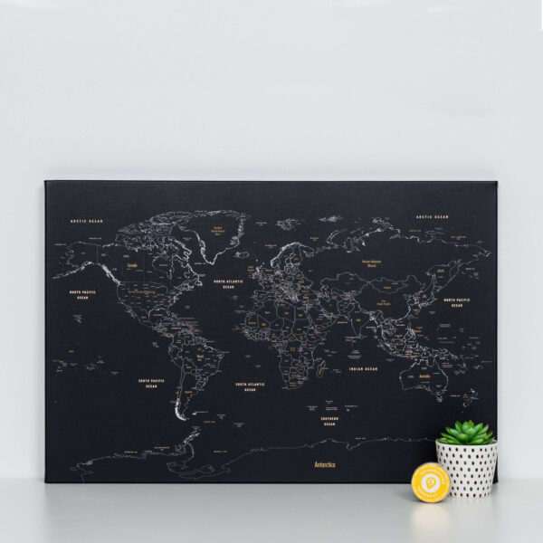small black push pin map of the world
