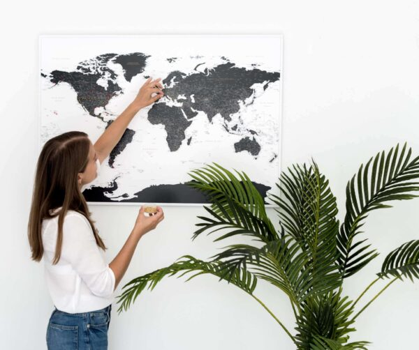 detailed black and white world map pinboard