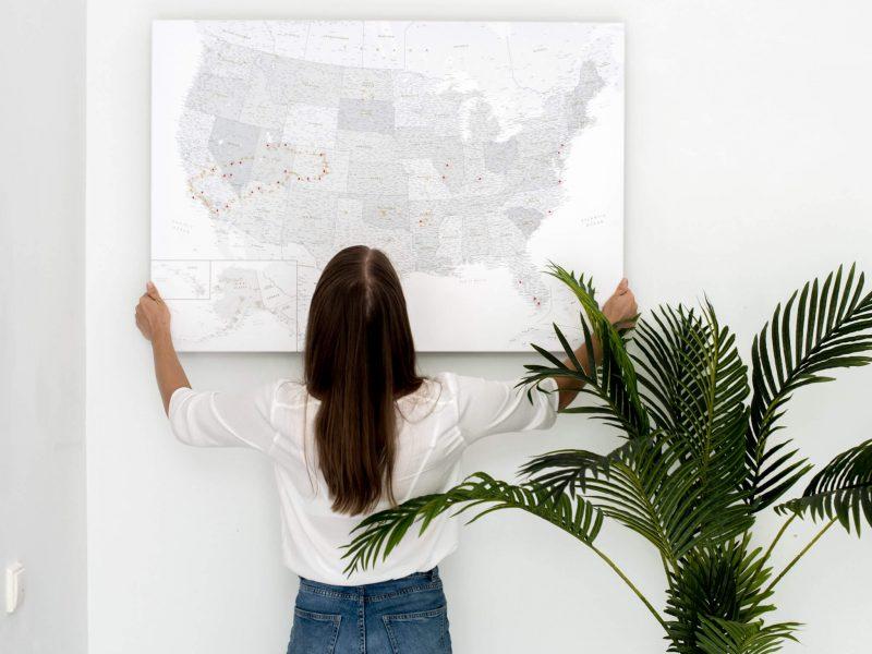 larga usa map with national parks grey