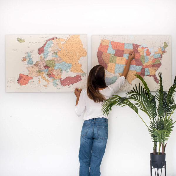 political usa map with pin colorful