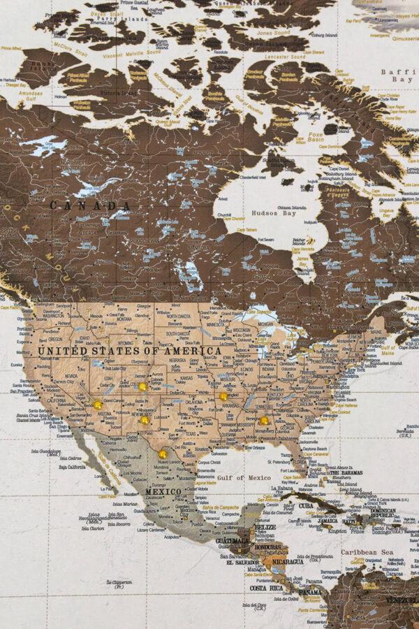 detailed push pin world map safari