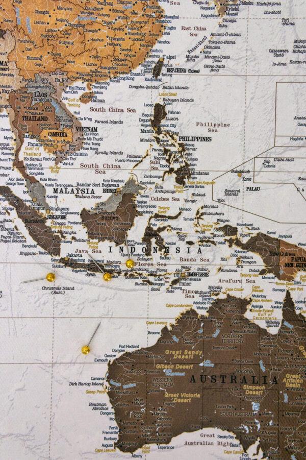 push pin world map safari