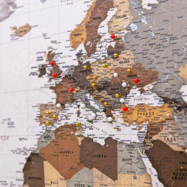 world map with pins safari
