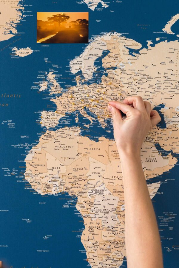 blue-world-map-with-gold-pins-tripmapworld