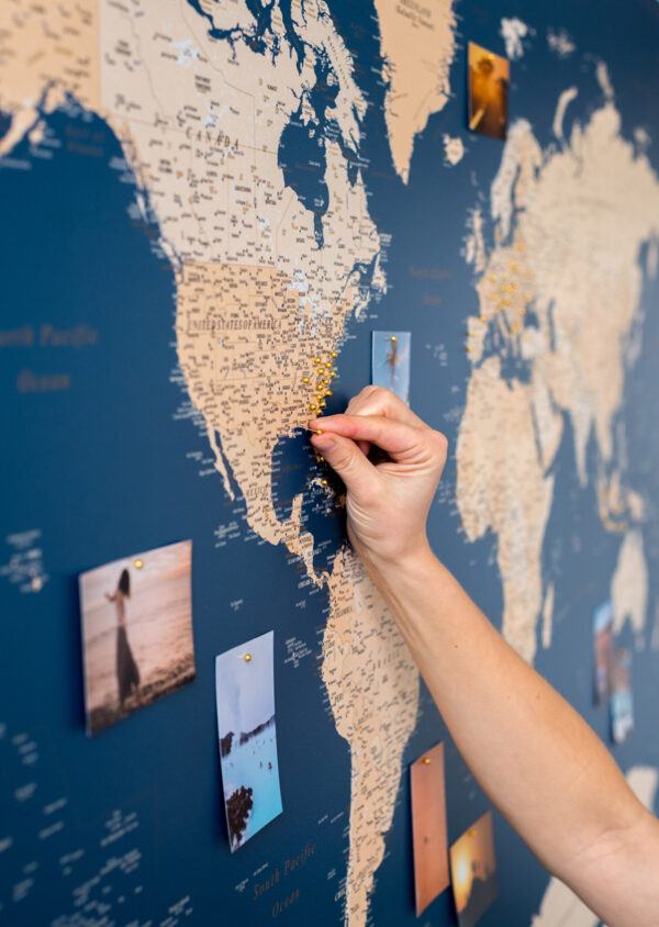 detailed-blue-world-map-wall-art-with-pins