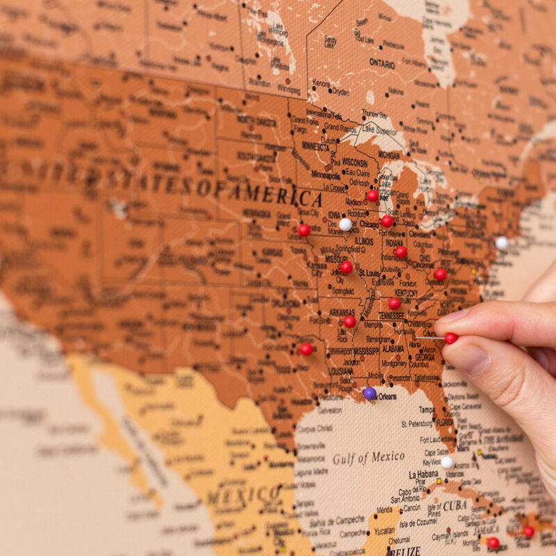 detailed-world-travel-map-with-pins-brown