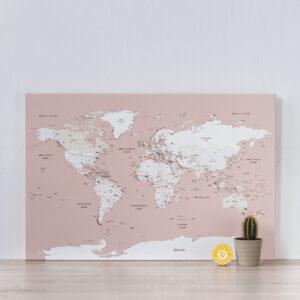 dusty pink push pin world map