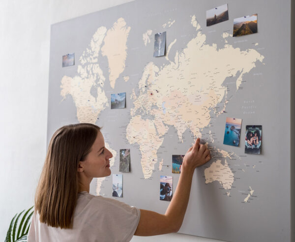 grey-pink-large-world-map-push-pin