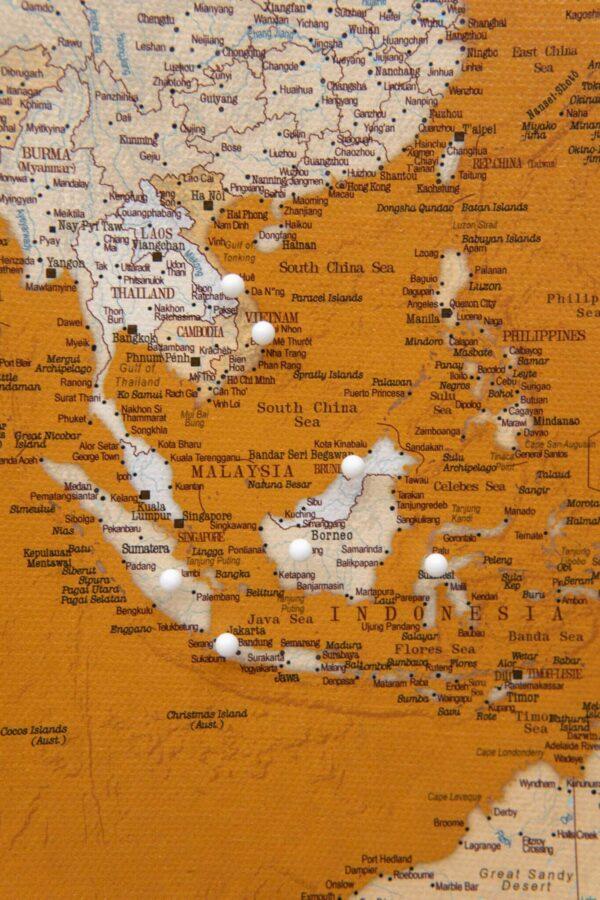 pinnable mustard world map decor