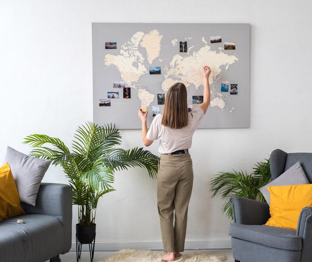 push-pin-grey-rose-world-map-tripmapworld