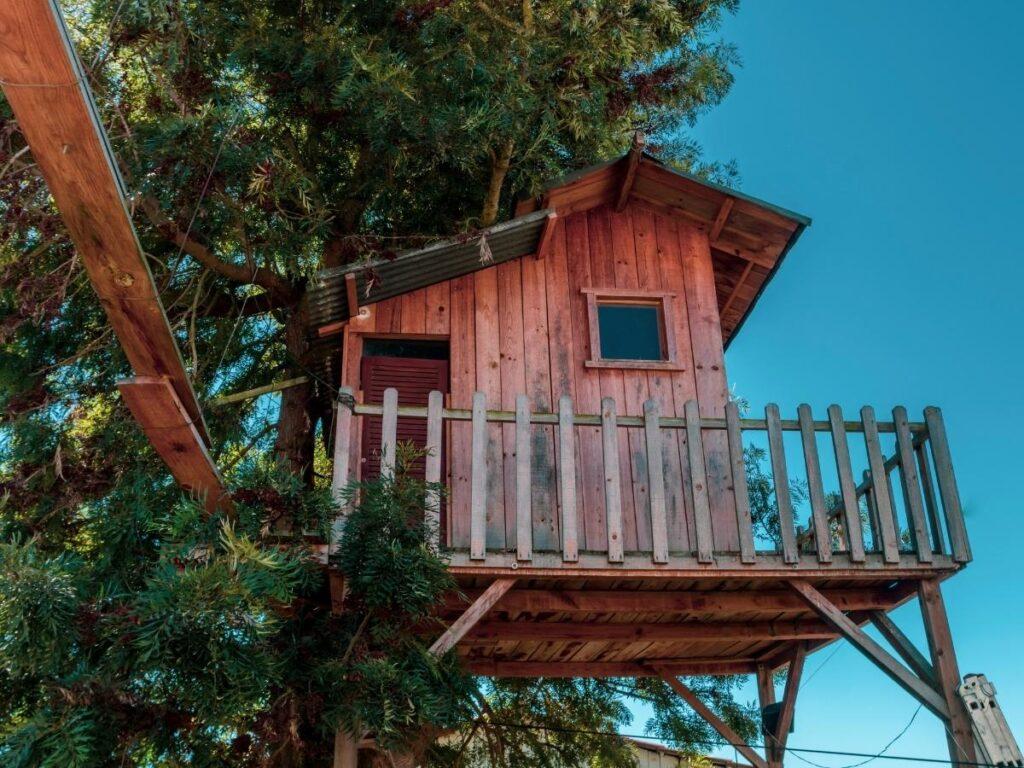build a treehouse Summer Bucket List Ideas
