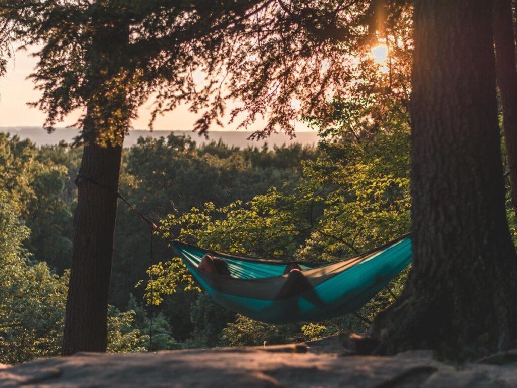 sleep in homock summer